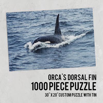 Customize a 1000 Piece Puzzle